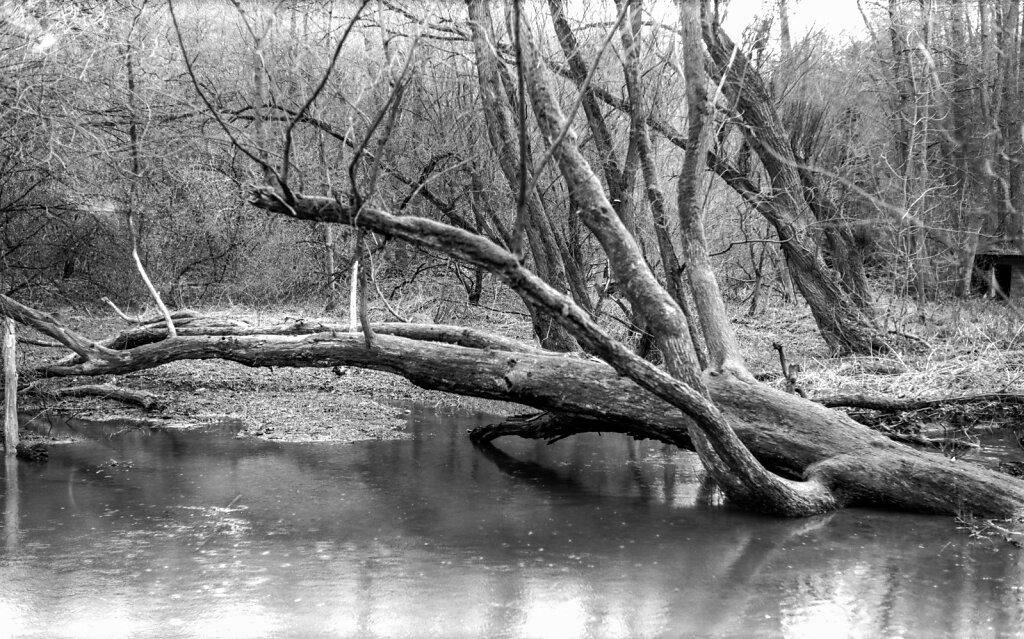 ǔnětický potok